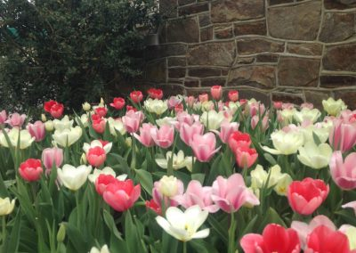 Kennett Golf and Country Club - Binkley Horticulture