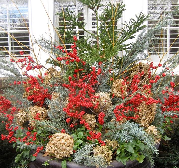 Binkley Christmas Tree Stand