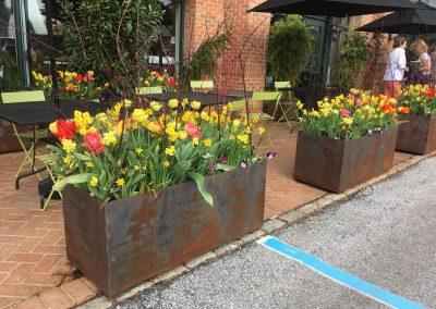Binkley Horticulture