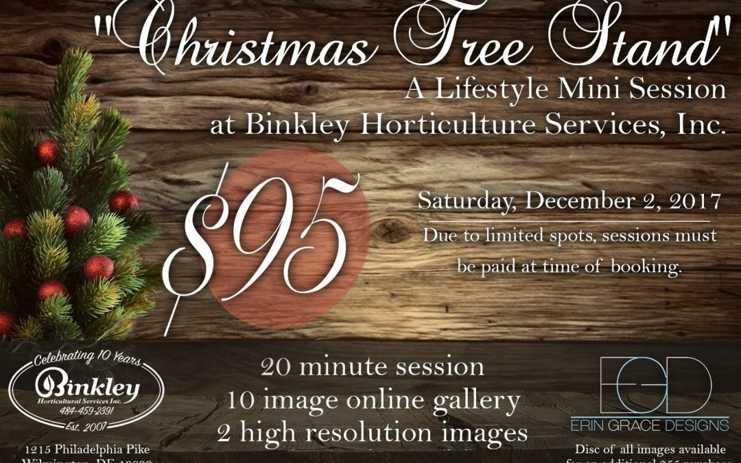 Binkley Tree Stand Family Photo Session
