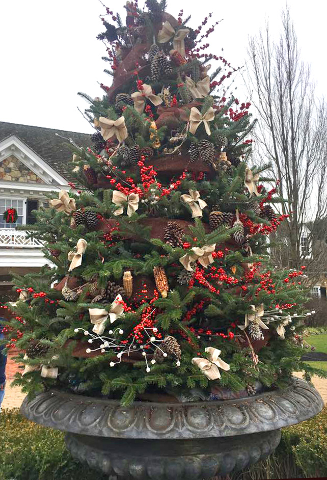Our custom containers, swags, and trees are decorated with festive greens, winterberry and evergreen holly branches, and dried flowers.